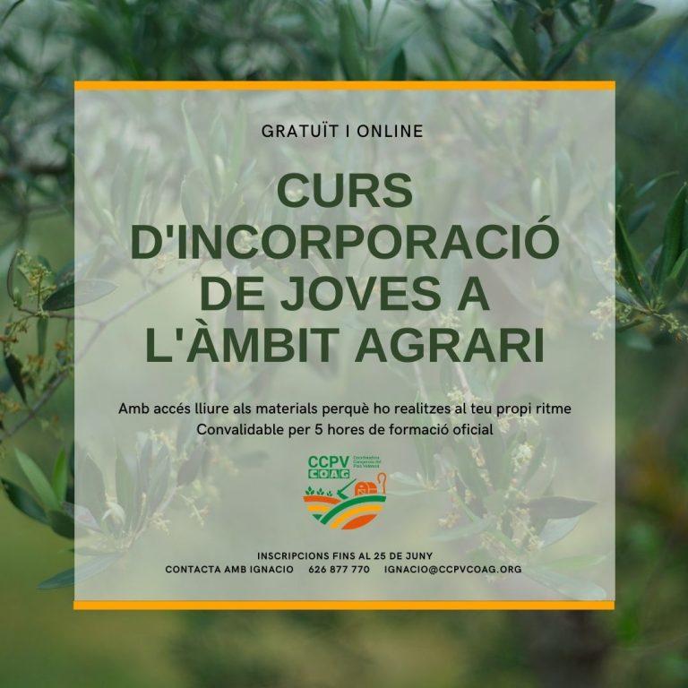 curs_online_11